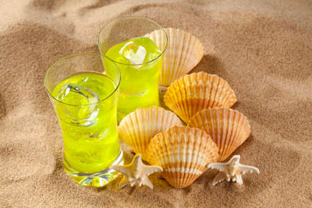 bebidas frias: Cold drinks and shells on the beach