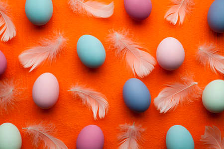 Easter background - colored eggs and white feathers on orange background