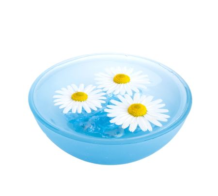 Floating Flowers Stock Photo - 6738480
