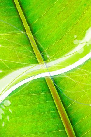 Refreshing Green Background Stock Photo - 7108045