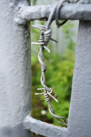 Barbed Wire Stock Photo - 7353877