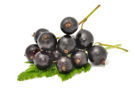 Black Currants Stock Photo - 7423396
