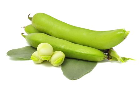 Broad Beans Stock Photo - 7423394