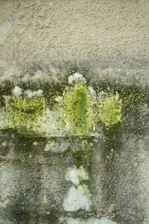 unkept: Grungy Concrete Wall