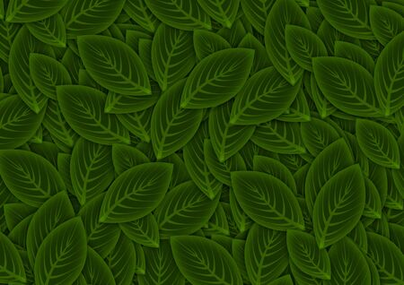 Green Leaves Background Stock Photo - 8117571