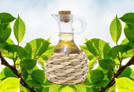 Flasche Olivenöl auf grüne Zweige-Hintergrund