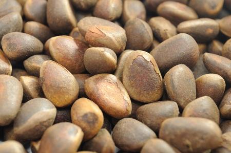pignons de pin: Gros plan de noix de pin Banque d'images