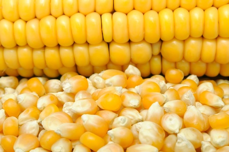 corncob: Corn And Corncob