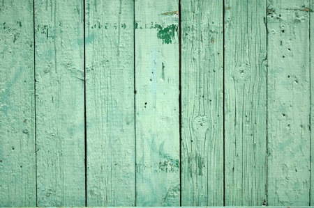 Green Wood Background Stock Photo - 9504792