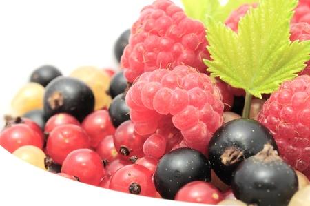 Fresh Berries photo