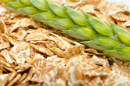 Wheat Flakes and Ear of Wheat Close-up photo