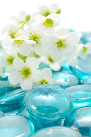 wellness environment: White Flowers on Blue Glass Stones