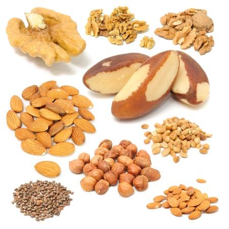 avellanas: Conjunto de frutos secos (nueces, nueces del Brasil, almendras, cacahuetes, avellanas y pi�ones) aislada sobre fondo blanco Foto de archivo