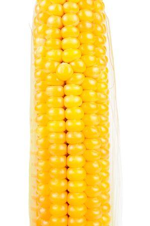 spadix: Corn on the Cob on White Background