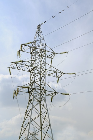 Electricity Pylon and Birds on Power Lines photo