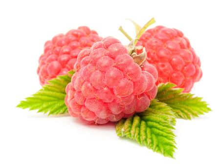 Red Raspberries Isolated on White Background photo