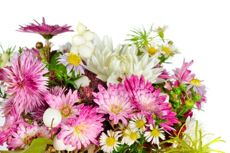 belle: Beautiful Bouquet of Flowers on White Background