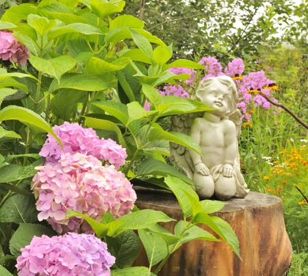 White angel statue on tree stump in the garden with pink hydrangea stock photo white angel statue on tree stump in the garden with pink hydrangea flowers mightylinksfo