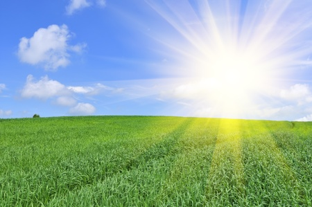 Sun Shining in Blue Sky over Green Field photo