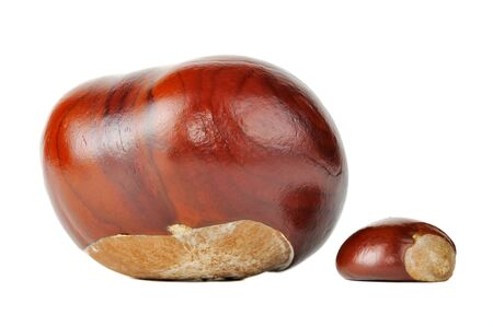 horse chestnuts: Horse Chestnuts Isolated on White Background Stock Photo