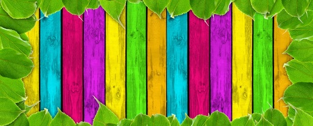 Vibrant Summer Background – Multicolored Wood Planks and Green Leaves Stock Photo - 12841329