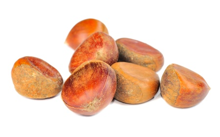 Chestnuts Isolated on White Background photo