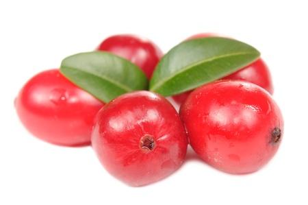arandanos rojos: Los ar�ndanos de gran tama�o con hojas verdes aisladas sobre fondo blanco