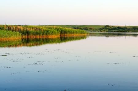 bullrush: Calm Country Lake