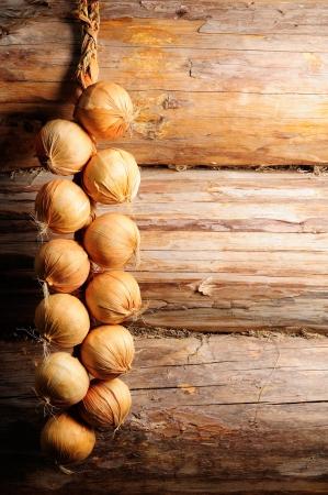 onions: Cebolla en la pared de madera con copia espacio Foto de archivo