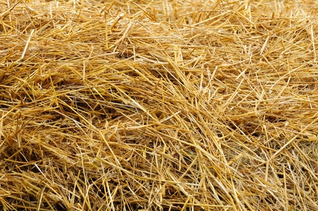 hayloft: Straw as Background Stock Photo