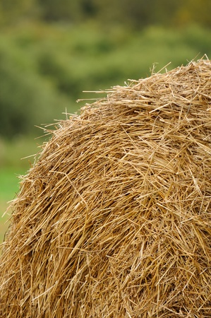 Stack of Straw in the Field photo