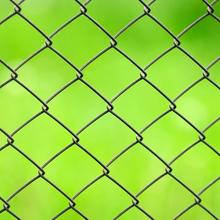 fencing wire: Wire Mesh Fence Close-Up on Green Background