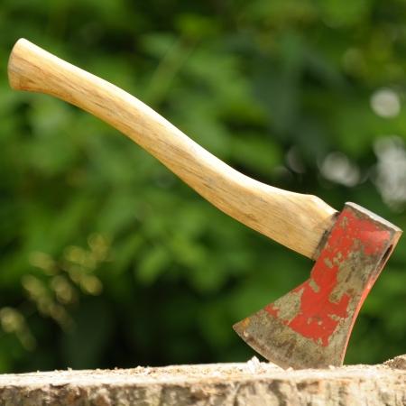 Ax (Wood Chopper) in Tree Stump photo