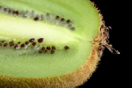 longitudinal: Kiwi Fruit Longitudinal Section on Black Background