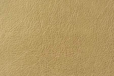 Brownish Green Artificial Leather Background Texture Stock Photo - 17281603