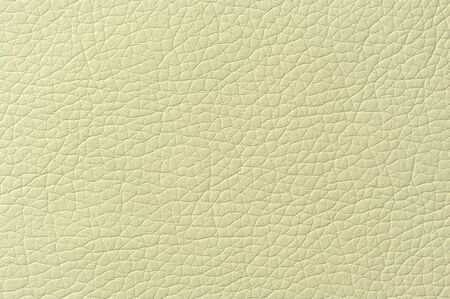 Pale Green Artificial Leather Background Texture Stock Photo - 17281592