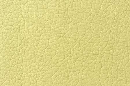 bumped: Light Green Artificial Leather Background Texture Stock Photo