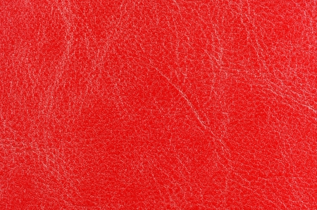 Red Glossy Leather Texture photo
