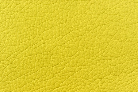 Bright Green Faux Leather Texture Stock Photo - 17609049