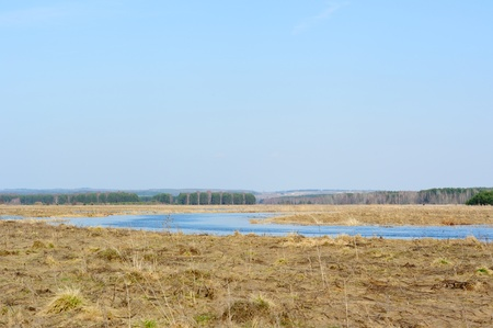 floodplain: Spring River