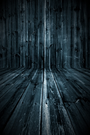 Dark Wooden Room