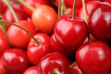 Red Sweet Cherries photo