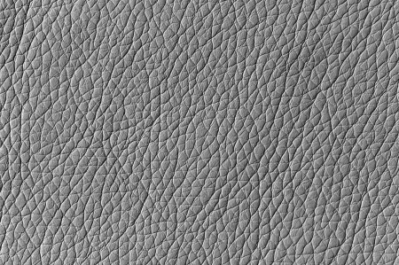 Silver Artificial Leather Background Texture Stock Photo - 21602186