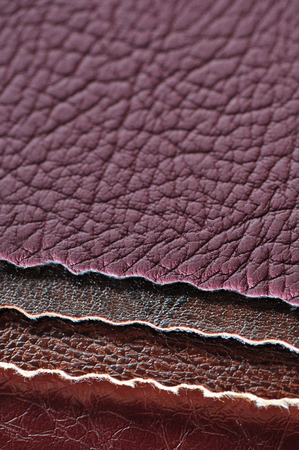 pelt: Four artificial leather swatches close-up Stock Photo