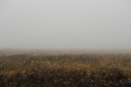 Foggy Autumn Morning in Countryside photo
