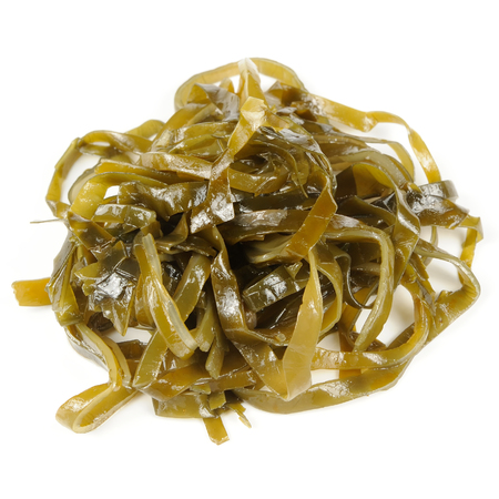 Laminaria  Kelp  Seaweed Isolated on White Background photo