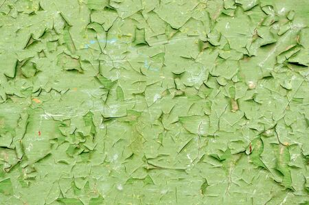 crackles: Peeling Paint on the Wall
