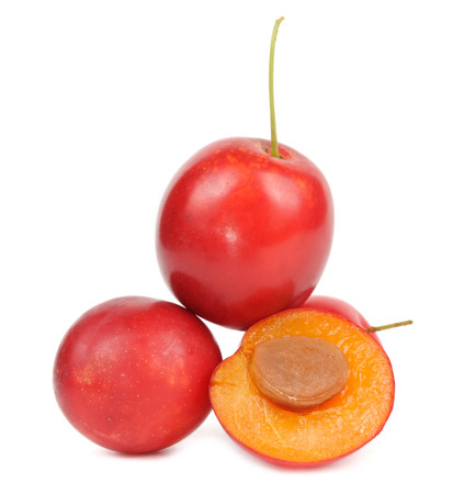 prunus cerasifera: Red Cherry Plums Isolated on White Background
