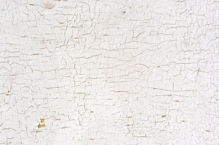 crackle: Peeling Paint on the Wall