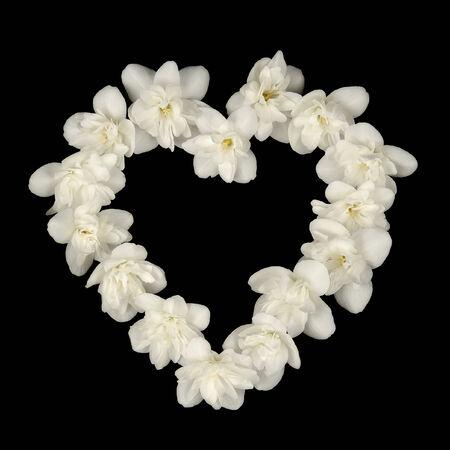 Heart Shape Made of White Jasmine Flowers on Black Background photo